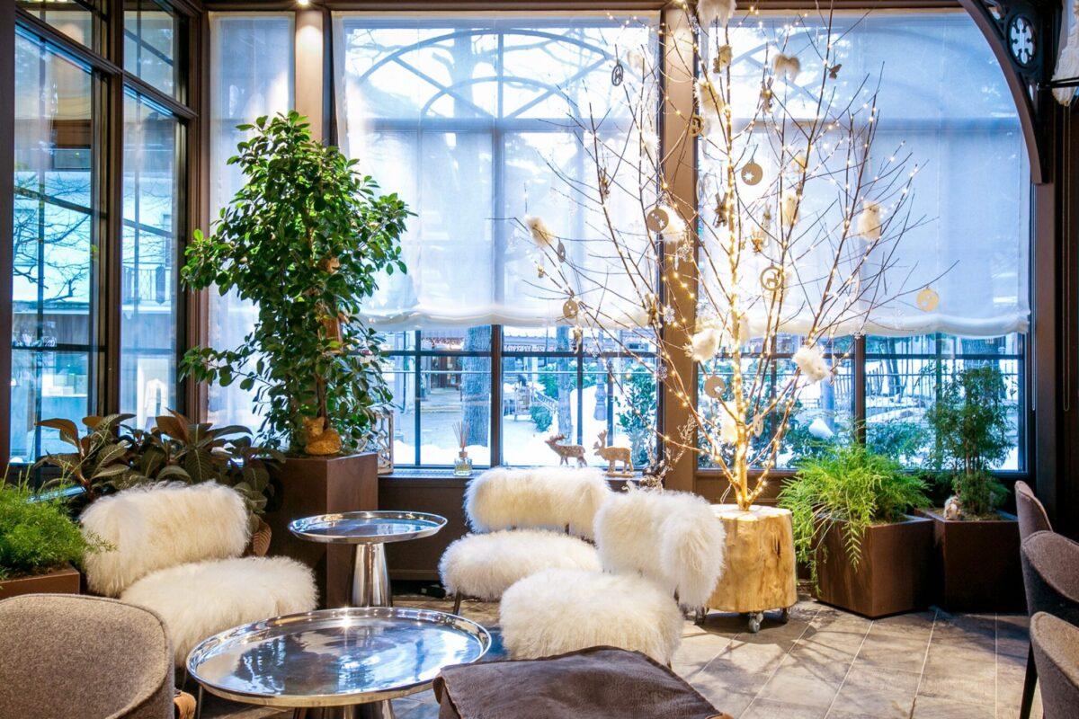 salotto con piante e sedie imbottite